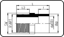 Adaptor Male Thread